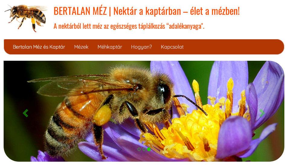 Karbonsemleges a méhész weboldala! | website.carbonoffset.hu